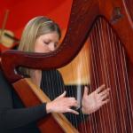 Sabina McCague - Harp, Ceol na Coille Summer School, Traditional Music, WAW, Wild Atlantic Way,